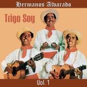 Trigo Soy, Vol. 1 de Hermanos Alvarado