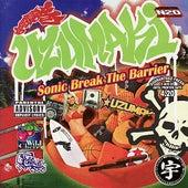Sonic Break the Barrier de Various Artists
