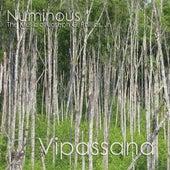 Vipassana by Numinous (Classical)