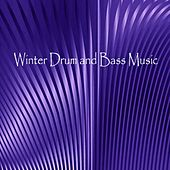 Winter Drum and Bass Music - EP by Various Artists