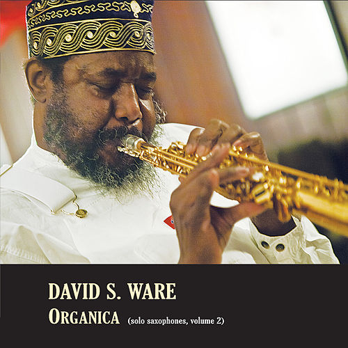 Organica (Solo Saxophones, Volume 2) by David S. Ware
