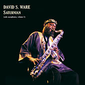 Saturnian (solo saxophones, volume 1) by David S. Ware
