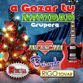A Gozar Tu Navidad Grupera by Various Artists