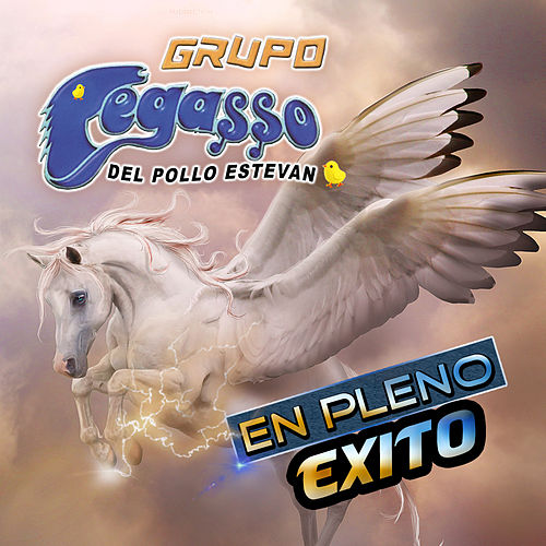 En Pleno Exito I see you in my Reflection Grupo Pegasso - En Pleno Exito by Grupo Pegasso