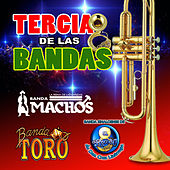 Tercia De Las Bandas by Various Artists