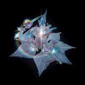 The Gate (Edit) von Björk