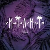 Parra Snippet von Miami Yacine