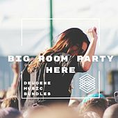 Big Room Party Here - EP by Various Artists