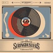 Undercover, Vol. 2 von The Infamous Stringdusters