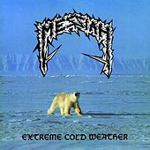 Extreme Cold Weather de Messiah