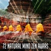 72 Natural Mind Zen Auras de Meditação e Espiritualidade Musica Academia