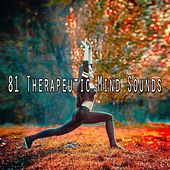 81 Therapeutic Mind Sounds von Massage Therapy Music
