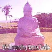 69 Surrounding Natural Tracks von Entspannungsmusik