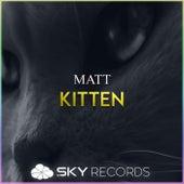 Kitten by Matt