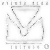 Friends de Stereo Slam