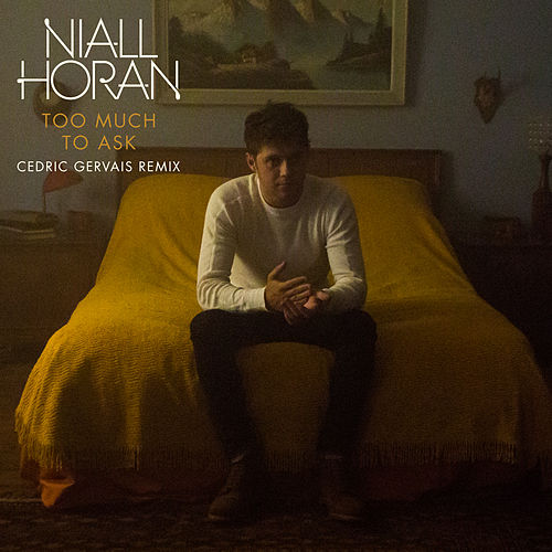 Too Much To Ask (Cedric Gervais Remix) by Niall Horan