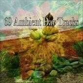 69 Ambient Day Tracks de Meditación Música Ambiente