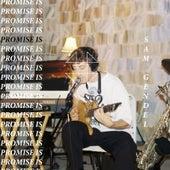 Promise Is de Sam Gendel