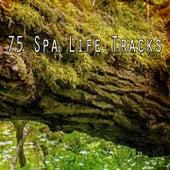 75 Spa Life Tracks de Best Relaxing SPA Music