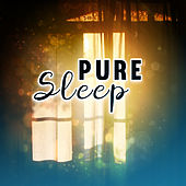 Pure Sleep – Relaxing Waves to Calm Down, Peaceful Melodies, Restful Sleep, Soothing Nature Sounds, Calmness de Ambient Music Therapy
