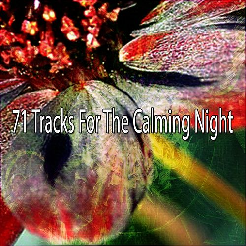 71 Tracks For The Calming Night by Smart Baby Lullaby
