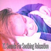 71 Sounds For Soothing Relaxation de White Noise Babies