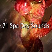 71 Spa Day Sounds by S.P.A