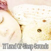 77 Land Of Sleep Sounds by Lullaby Land