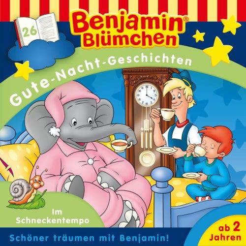 Gute Nacht Geschichten - Folge 26: Im Schneckentempo von Benjamin Blümchen
