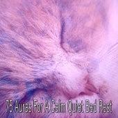 75 Auras For A Calm Quiet Bed Rest by Baby Sleep Sleep