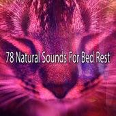 78 Natural Sounds For Bed Rest de Sounds Of Nature