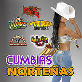 Cumbias Norteñas by Various Artists