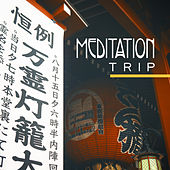 Meditation Trip – Healing Music for Yoga, Meditation Music, Zen, Massage, New Age 2017 de Zen Meditation and Natural White Noise and New Age Deep Massage