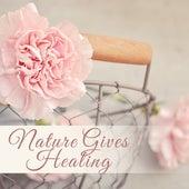 Nature Gives Healing – Soft Spa Music, Deep Sleep, Zen, Best Relaxing Sounds for Massage, Rest by Nature Sounds (1)