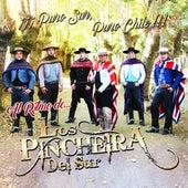 Puro Sur Puro Chile by Los Pincheira del Sur