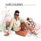 Everlasting Love de Marcia Barnes