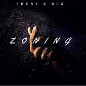 Zoning by DLG