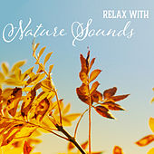 Relax with Nature Sounds – Stress Relieve, Time to Rest, Calming Nature Waves, Water Sounds by Echoes of Nature