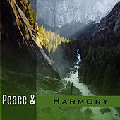 Peace & Harmony – Calm Sounds to Rest, Relaxation Melodies, New Age Music for Peaceful Mind, Stress Free by Relaxed Piano Music