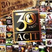 30 Anos de Sucessos Gaúcho, Vol. 2 von Various Artists