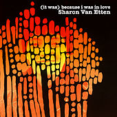 (It Was) Because I Was in Love (Deluxe Reissue) de Sharon Van Etten