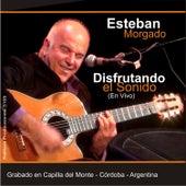 Disfrutando el Sonido (En Vivo) by Esteban Morgado