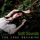 Soft Sounds for Long Dreaming – Easy Listening, Sleep All Night, Stress Relief, Peaceful Mind & Body, Relaxing New Age by Deep Sleep Meditation