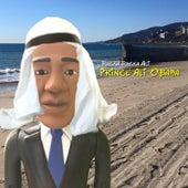 Prince Ali Obama by Rucka Rucka Ali