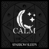 Calm: Lullaby renditions of Bayside songs von Sparrow Sleeps