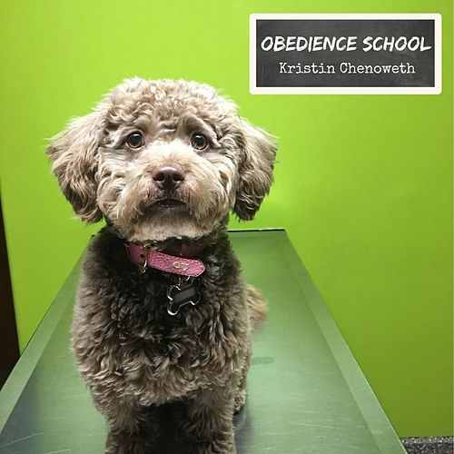 Obedience School by Kristin Chenoweth