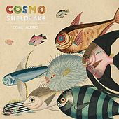 Come Along (Edit) by Cosmo Sheldrake