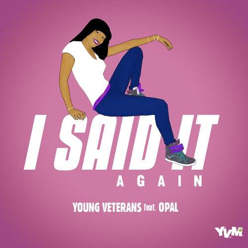 I Said It Again (Feat. Opal) - Single de Young Veterans
