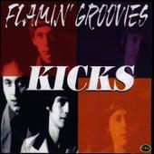 Kicks by The Flamin' Groovies