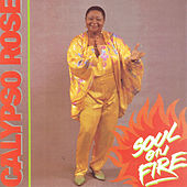 Soul On Fire by Calypso Rose